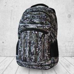Earthquake backpack
